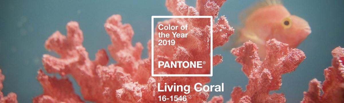 Living Coral è il colore del 2019